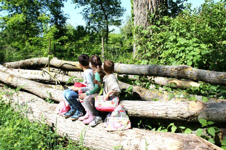 Kids – wir im Wald / unterwegs mit Sigikid Forest #Anzeige