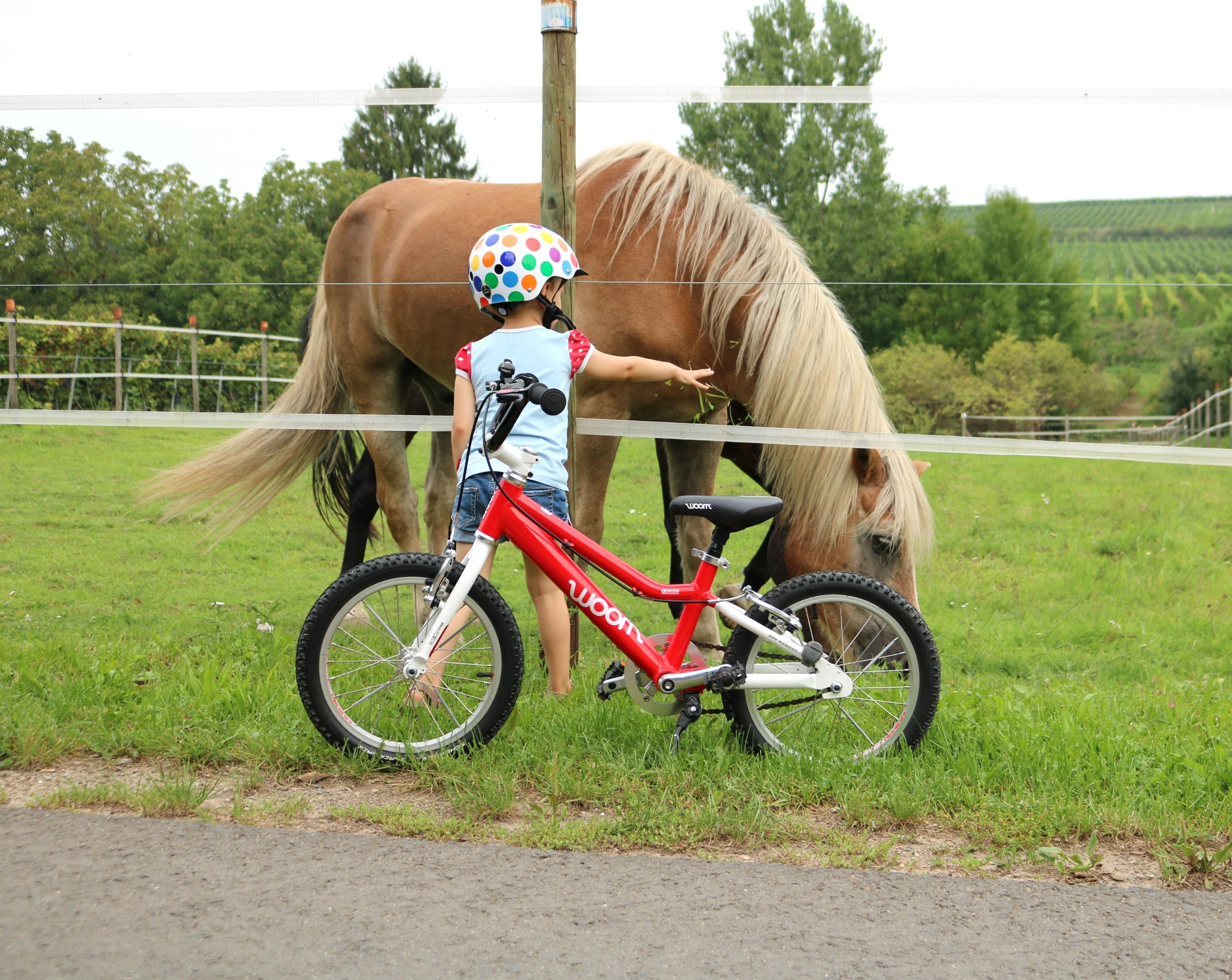 Brilliant Upcycling Fahrrad Dekoration Von Unsere Große Bekam Das Rote Woom Damals