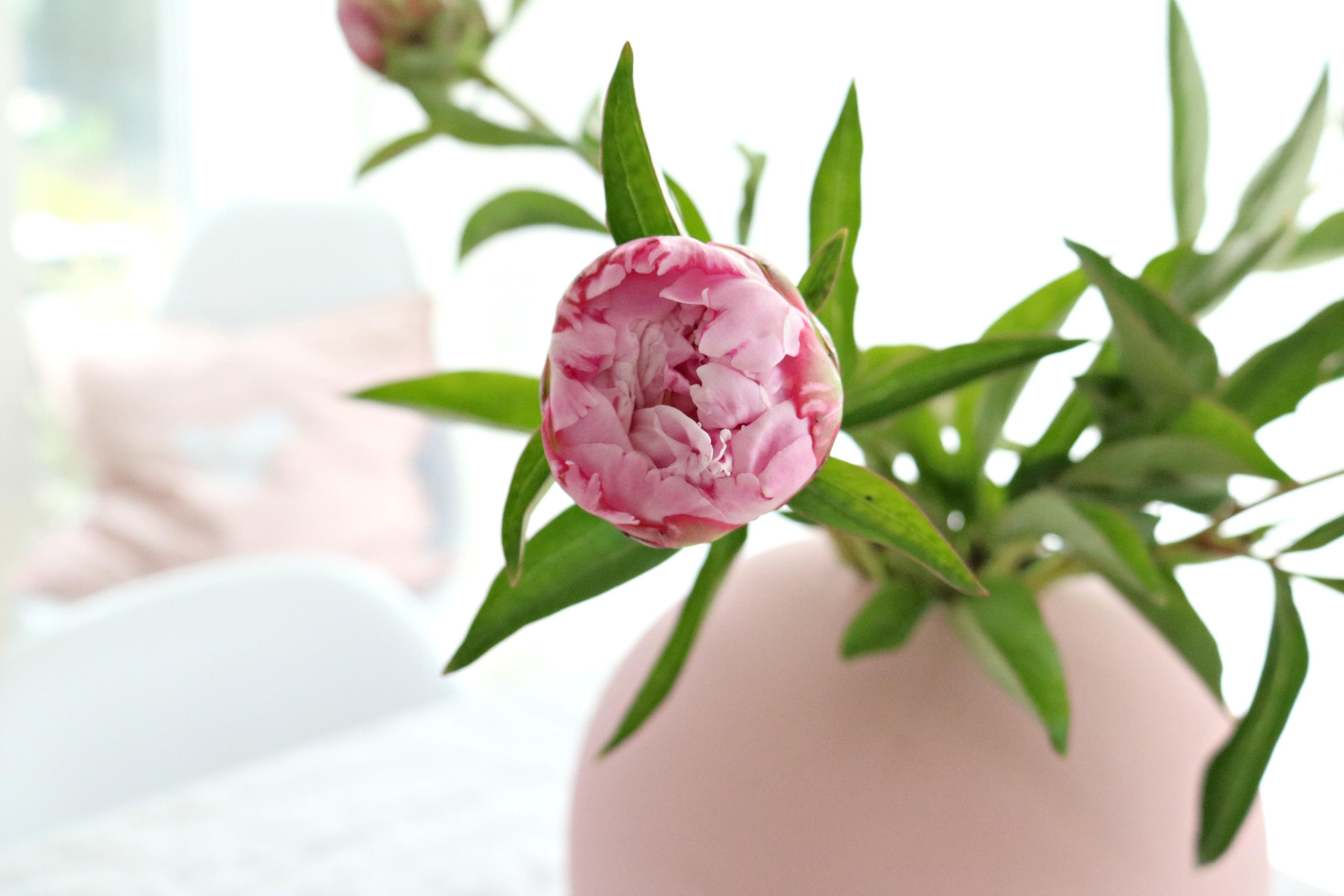 Blumen_Muttertag