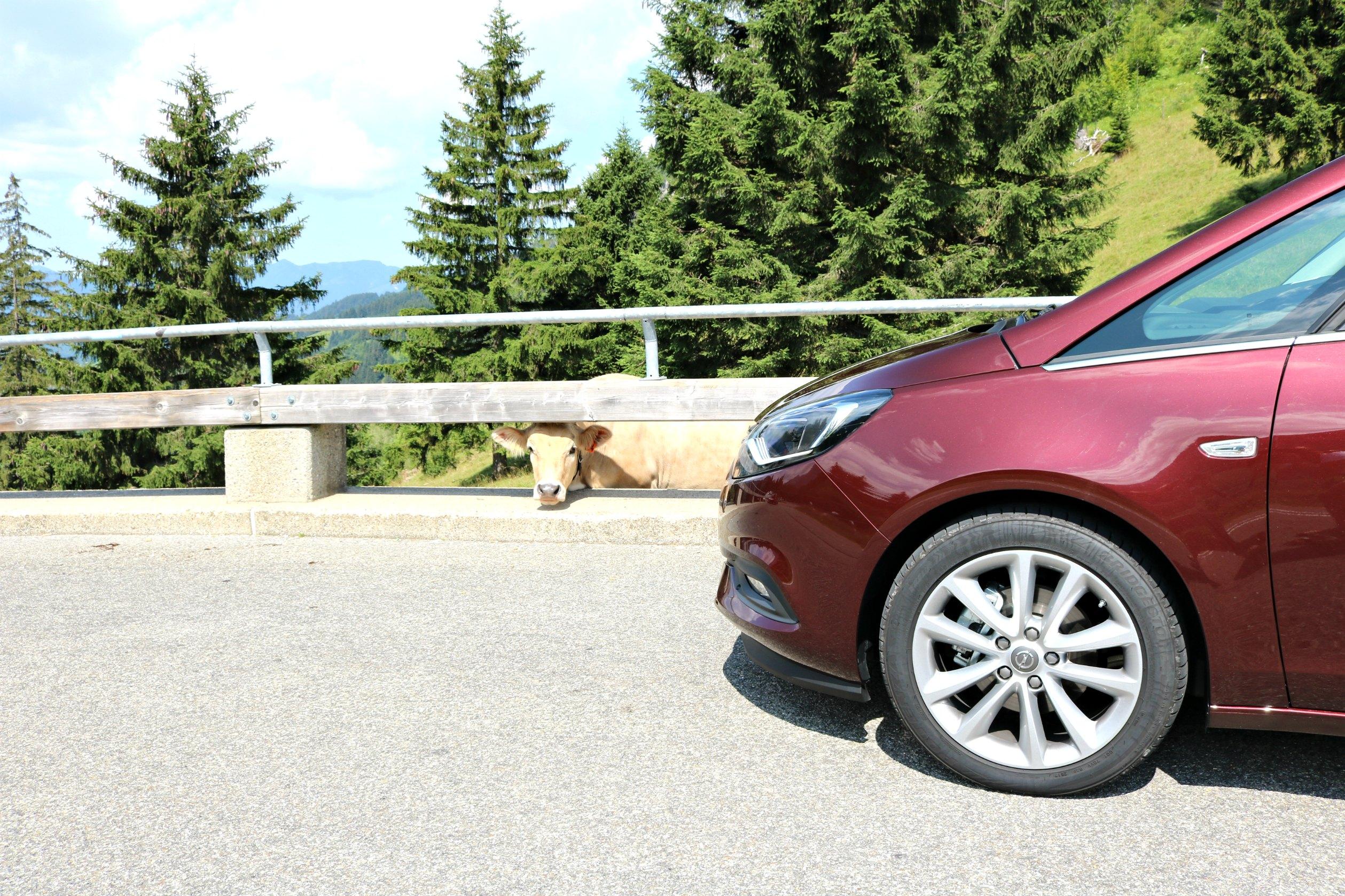 Familienauto_Opel_Zafira