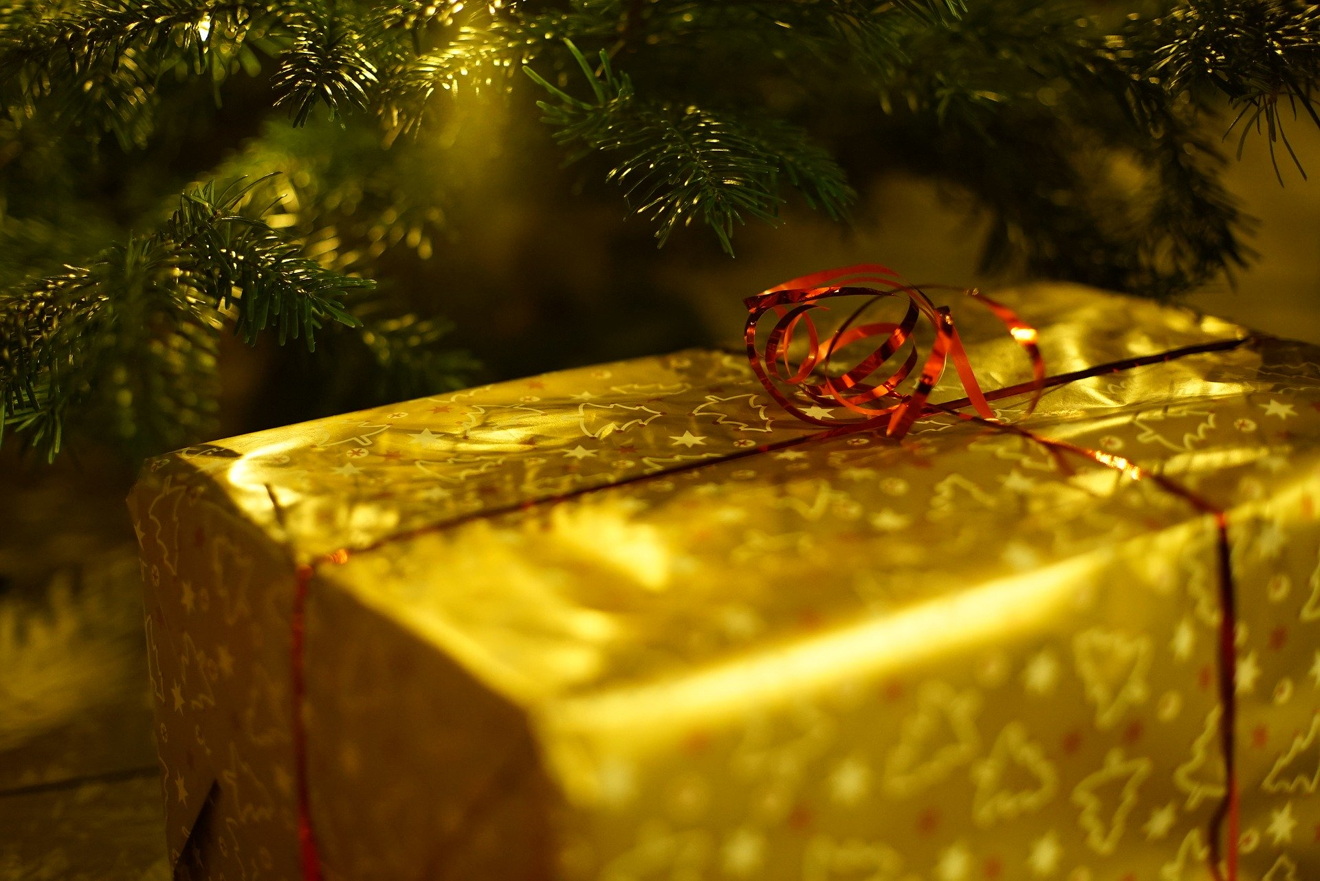 Top 5 der Weihnachtsferien