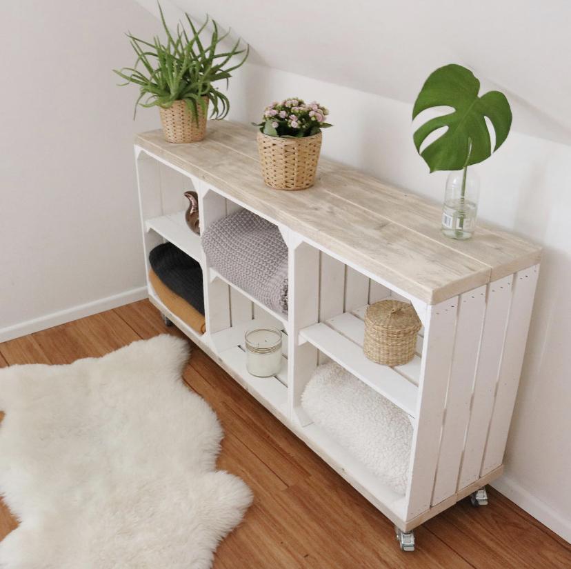 Grün für Anfänger, Zimmerpflanzen